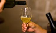 Konavle Wine route Malvasija