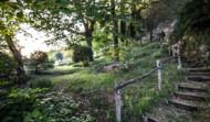 Villa Stairway to Forest