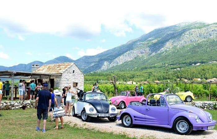 Cottage VW event