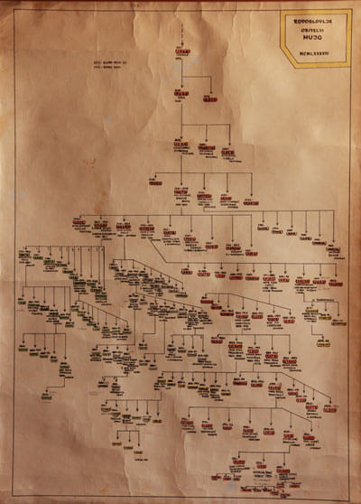 Kameni Dvori Family Tree Mujo
