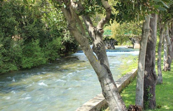 Konavle River Ljuta stream