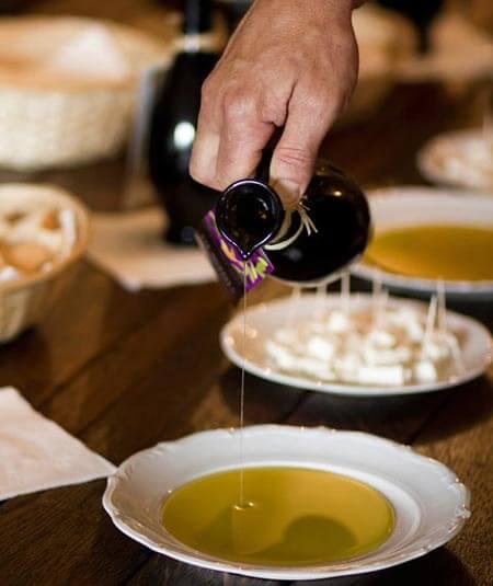 Konavle wine route olive oil