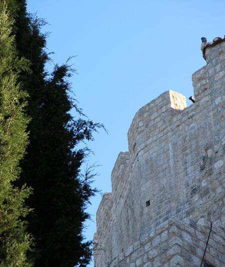 Soko grad walls