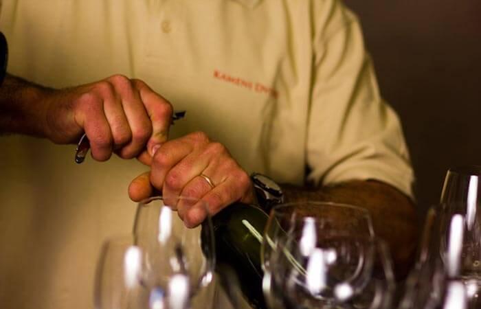 Kameni Dvori Wine Tasting Malvasia