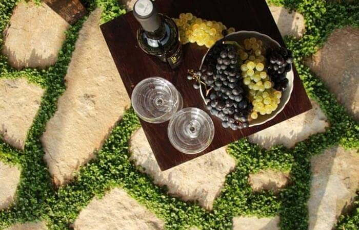 Cottage Wine and Fruits